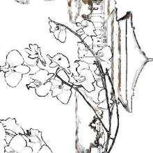 Coloriage du printemps - Coloriage - Coloriage NATURE - Coloriage FLEUR - Coloriage FLEUR A IMPRIMER
