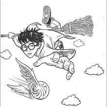 Coloriage Harry Potter : Le vif d'or au Quidditch