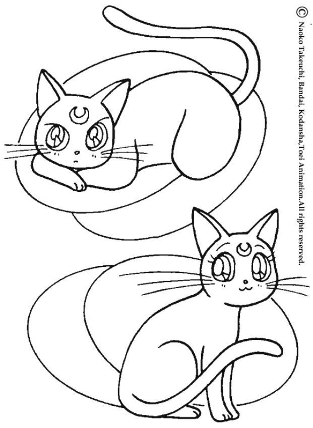 Manga dessin de chats - Desin de chat ...