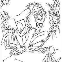 Coloriages coloriage des conseils du babouin fr - Dessin de babouin ...