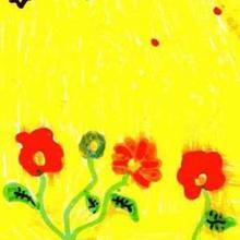 Fleurs d'été - Dessin - Dessin NATURE - Dessin FLEUR - Dessin FLEUR A COLORIER