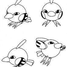 Natu - Coloriage - Coloriage POKEMON