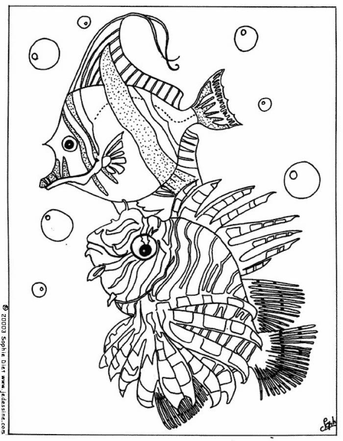 Coloriages coloriage de poissons - Coloriages poissons ...