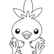 Poussifeu - Coloriage - Coloriage POKEMON