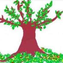 Un arbre - Dessin - Dessin NATURE - Dessin ARBRE
