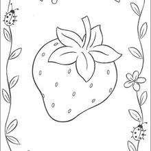 Coloriage d'une fraise - Coloriage - Coloriage PERSONNAGE BD - Coloriage CHARLOTTE AUX FRAISES - Coloriages CHARLOTTE AUX FRAISES
