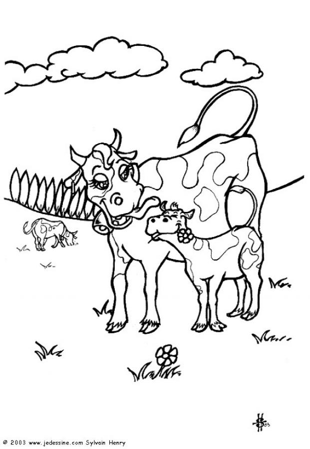 301 moved permanently - Dessin d une vache ...