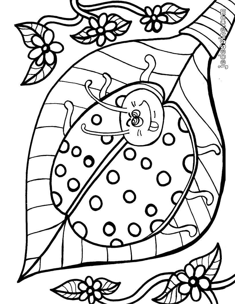 Coloriage Coccinelle Et Papillon.Coloriages Petite Coccinelle Fr Hellokids Com