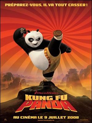 KUNG FU PANDA (9/01) - Vidéos - Les dossiers cinéma de Jedessine - Archives cinéma - DVD Janvier & Février 2009