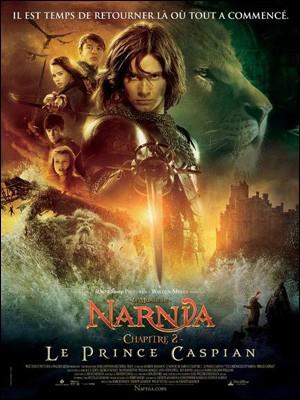 LE MONDE DE NARNIA - Chapitre 2  (le 26/12) - Vidéos - Les dossiers cinéma de Jedessine - Archives cinéma - DVD Novembre & Décembre 2008