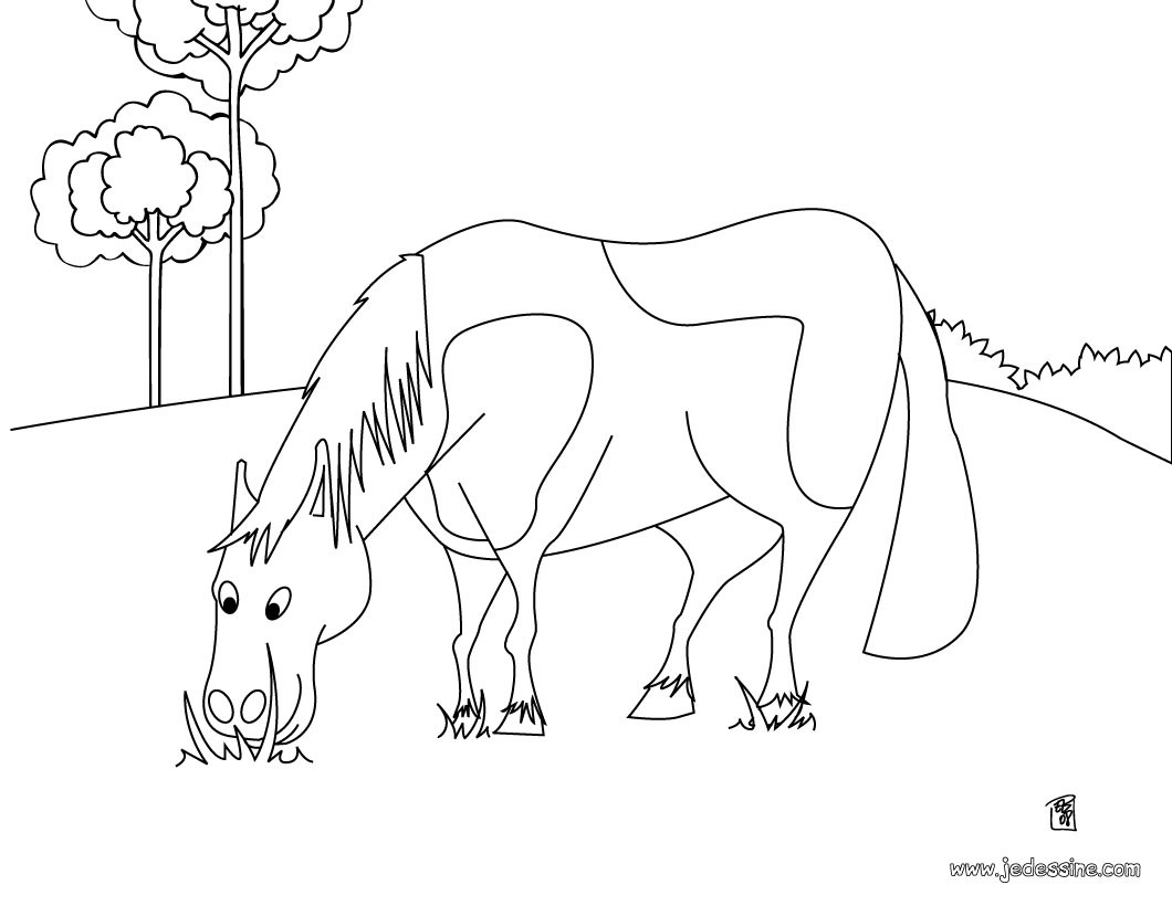 Belle Coloriage De Cheval Dans son Box Dificil