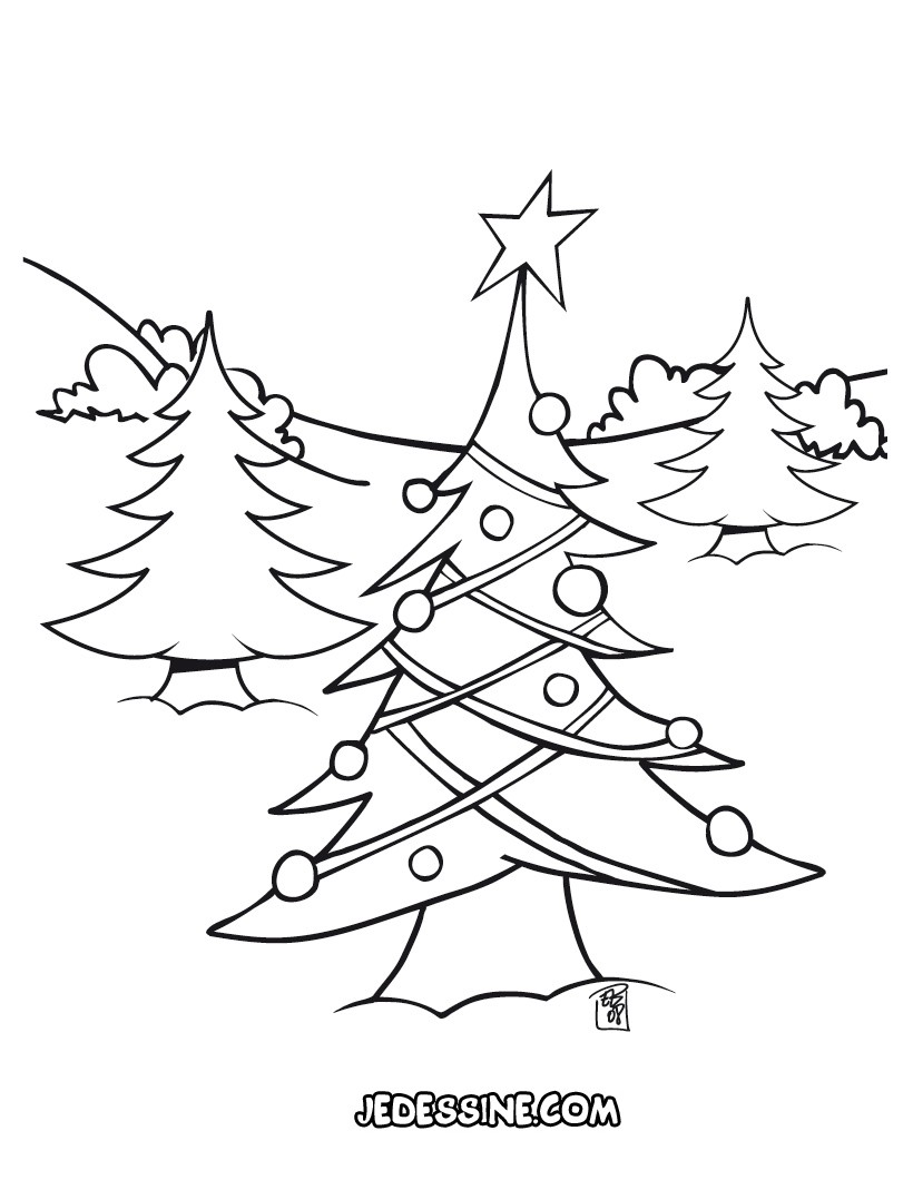 Coloriages coloriage d 39 une for t de sapins - Dessin de foret ...
