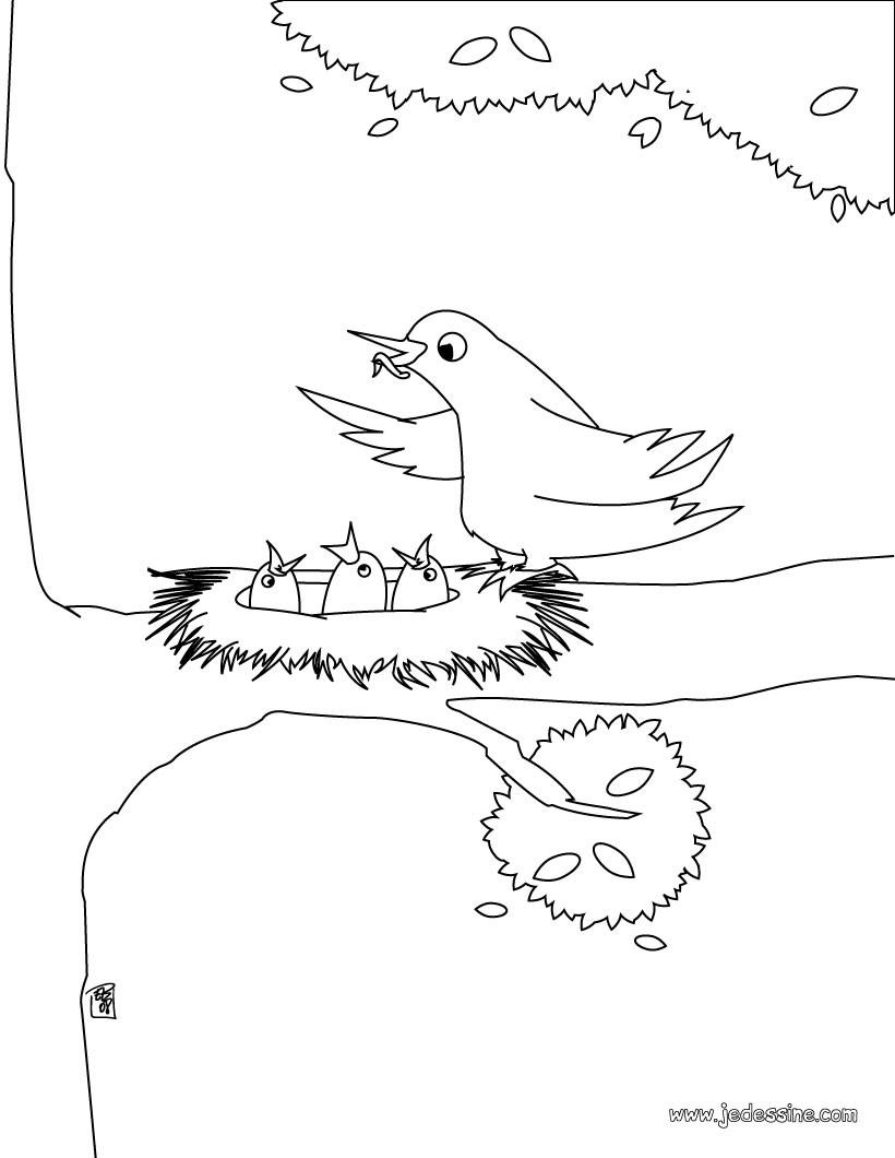 comment dessiner un nid