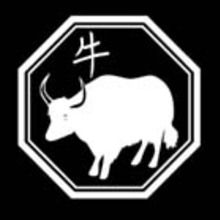 Reportage : Profil de chaque signe du zodiaque chinois.