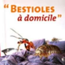 Une exposition passionnante sur les bestioles qui vivent dans ta maison !