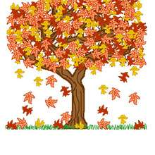 Arbre d'automne - Dessin - Dessin NATURE - Dessin ARBRE