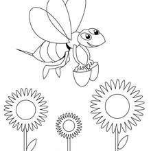 Coloriage d'une abeille - Coloriage - Coloriage ANIMAUX - Coloriage INSECTE - Coloriage ABEILLE