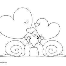 Coloriage d'escargots amoureux - Coloriage - Coloriage FETES - Coloriage SAINT VALENTIN - Coloriage COUPLE DE LA SAINT VALENTIN