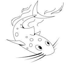 Coloriage d'un poisson chat - Coloriage - Coloriage ANIMAUX - Coloriage ANIMAUX MARINS - Coloriage POISSON CHAT