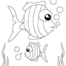 Coloriage de poissons tropicaux