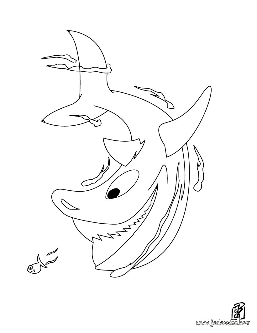Coloriages coloriage d 39 un requin - Dessin d un requin ...