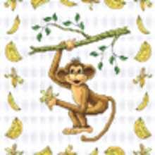 Histoire : Macou et les singes.