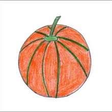 Dessiner un melon - Dessin - Apprendre à dessiner - Dessiner des fruits