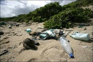 dechets plastique