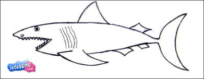 301 moved permanently - Requin a dessiner ...