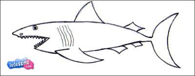 Comment Dessiner Dessiner Un Requin Fr Hellokids Com