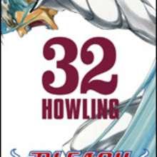 Manga : Bleach - Tome 32