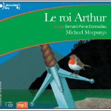 Livre : Le Roi Arthur