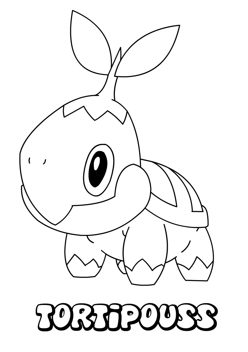 Coloriages tortipouss - Coloriage pokemon en ligne ...