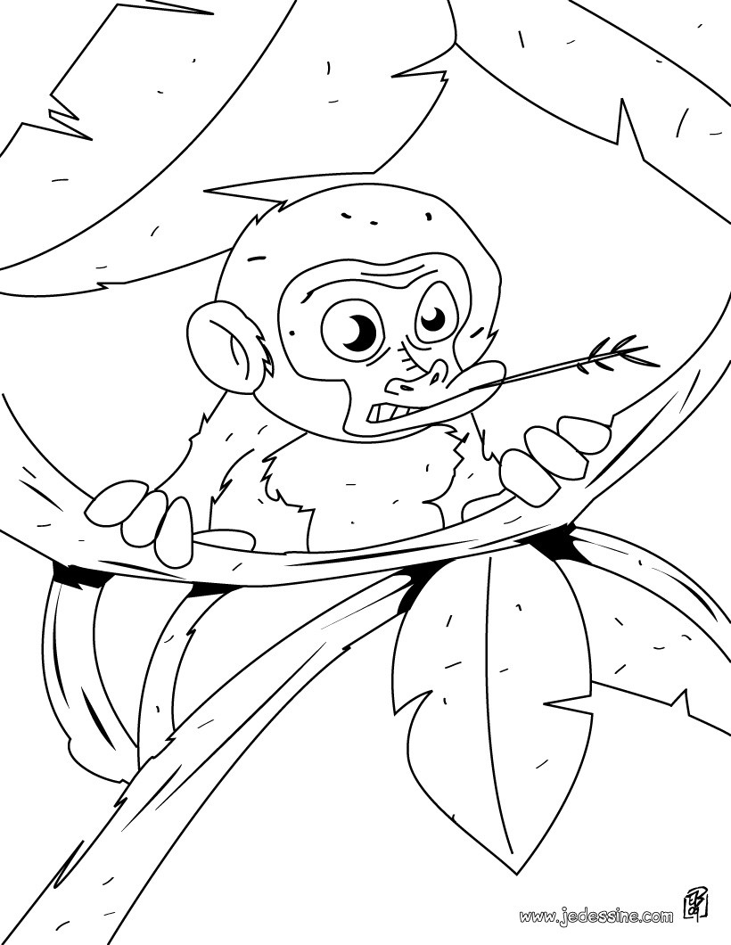 Coloriage d'un bébé singe dans les branches