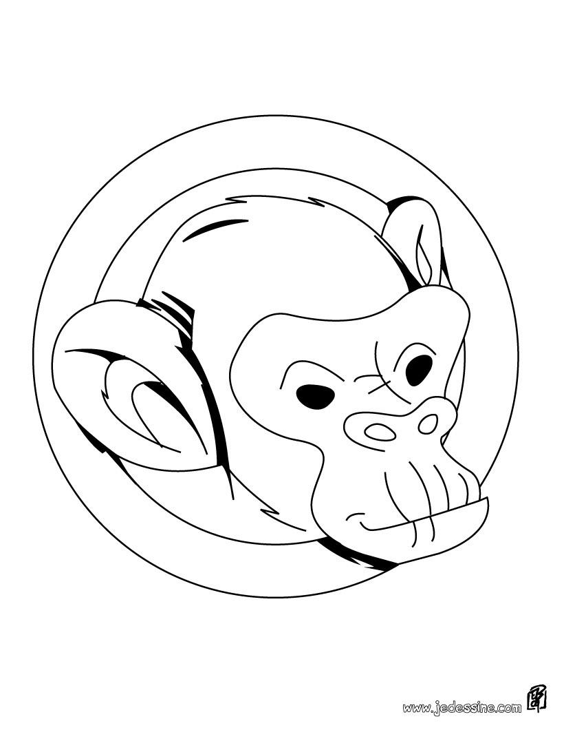 Coloriage d'un portrait de singe