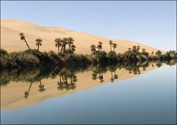OASIS-EN-LIBYE