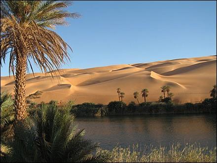Saharia [validé] Un-oasis-source_aje