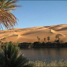 Les Oasis du désert : mirage ou réalité?