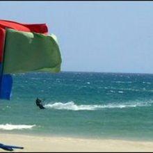 Reportage : La sécurité sur la plage