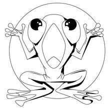 Coloriage d'une grenouille étendue