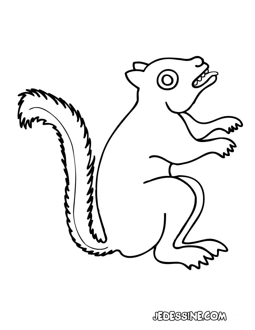 écureuil : Coloriages, Lire et apprendre, Vidéos et Tutoriels ...