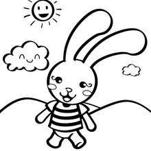 Coloriage : Petit lapin