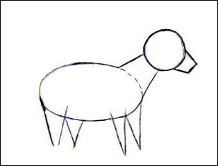 ebauche le museau du chien finalise le cou et ajoute lemplacement des pattes