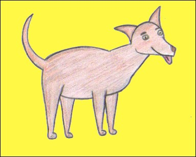 Comment dessiner un chien - Dessin d un chien ...