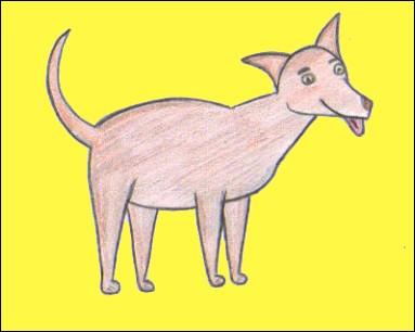 dessin chien dessiner un dauphin