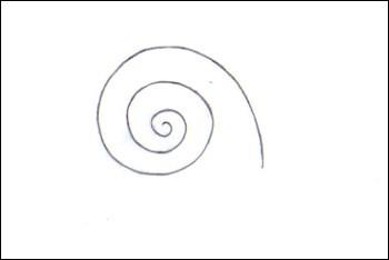 Comment dessiner un escargot - Dessin d un escargot ...