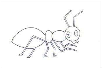 La cigale et la fourmi dessin - Comment dessiner une fourmi ...