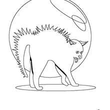 Coloriage d'un chat d'Halloween - Coloriage - Coloriage FETES - Coloriage HALLOWEEN - Coloriage HALLOWEEN A IMPRIMER