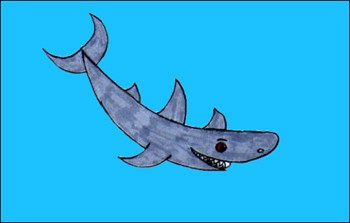 dessin requin
