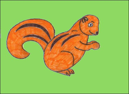 Comment dessiner un xerus - Dessiner des animaux ...